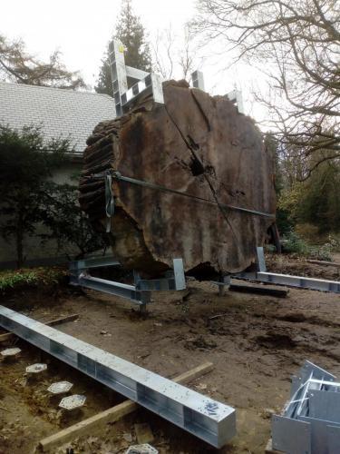 Plaatsing Mammoetboom op staalstructuur